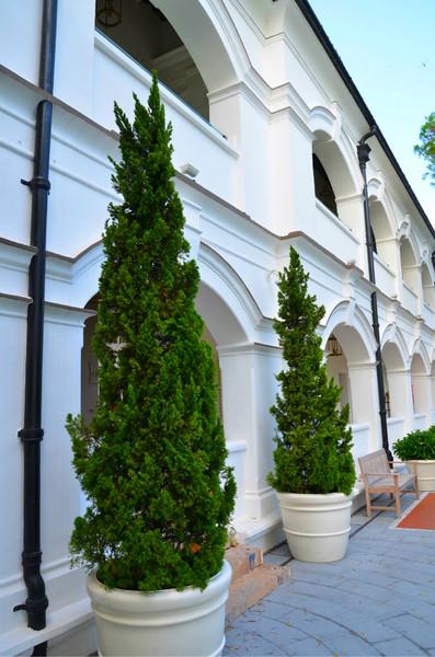 大澳文物酒店6